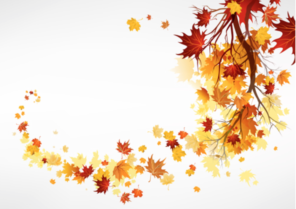 Farewell to Fall: RoundUp!