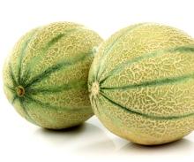 melons-jpeg